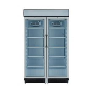 Armoire Réfrigérée pour boissons 02 porte vitrée 690 L